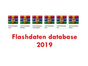 Flashdaten database for ERWIN for VAG cars 2019